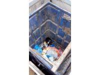 Yiyecek arayan köpek yer altı çöp konteynerinin içine düştü