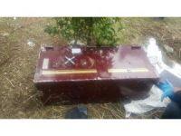 Hırsızlar kasayı çaldı serveti alamadan bahçeye attı