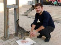 Lokantanın maskotu olan kedi, tavuklar için nöbet tutuyor