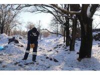 Talas Belediyesi kış soğuklarında sokak hayvanlarını unutmadı