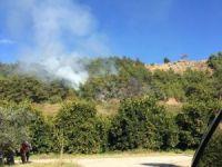 Alanya'da orman yangını korkuttu