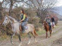 Tokat'ta atlı safari