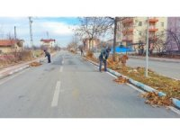 Beyşehir'de yaprak temizliği mesaisi sürüyor