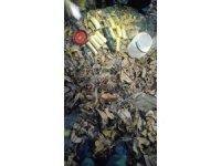 Hakkari'de 4 kilo 200 gram C-4 plastik patlayıcı ele geçirildi