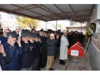Zeytin ağacından düşen gazi hayatını kaybetti