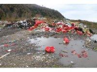 Zonguldak'ta çevreyi kirleten firmalara 48 milyon 391 bin lira ceza