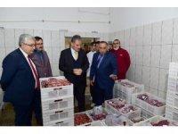 Başkan Çakır Nergis Et Entegre Tesisinde incelemelerde bulundu