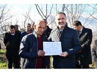 25 çiftçi meyve budama sertifikasını aldı