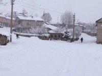 Bingöl'de kar, 278 köy yolunu kapattı, Yedisu'da okullar tatil edildi