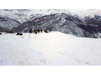 Bitlis'teki çığ bölgesinde ilk görüntüler
