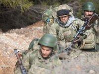Afrin'de stratejik Burseya Dağı ele geçirildi