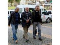 Giresun'da baygın köpeği ölmesi için otoyola atan şahıs tutuklandı