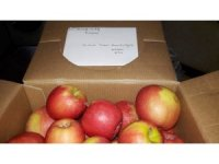 Askerlere 'kızıl elma' gönderdi