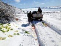 Kayseri Orman ve Su İşleri Müdürlüğü yaban hayvanları için yem bıraktı