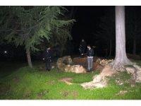 Polis define avcılarının peşinde