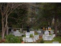 Mezarlıkta şüpheli ölüm