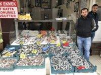 Batı Karadenizde balık fiyatları düştü