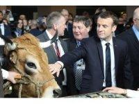 Macron'un tarım fuarında ilginç anları