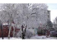 Ardahan'da kırağı kartpostallık manzara oluşturdu