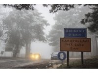 Kar yağışı ve sis hayatı olumsuz etkiliyor