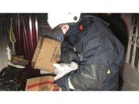 İtfaiye eri evde çıkan yangından etkilenen kedileri kurtarmak için kalp masajı yaptı