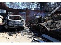 Avustralya orman yangınlarıyla alarmda