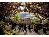 Bursa'nın baharı fotoğraflara yansıyor