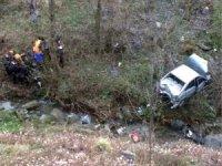 Otomobil şarampole uçtu: 1 yaralı