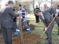 Başkan Yemenici Orman haftasını kutladı