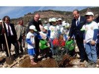 Zeytinköy'e 64 bin adaçayı fidanı