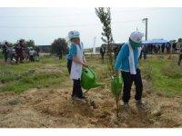 Kozan'da 1200 adet fidan toprakla buluştu