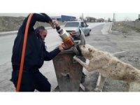Çöp kutusuna ayağı sıkışan köpeği itfaiye kurtardı