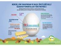 'Kodlu yumurta uygulaması' tüketicinin yanıltılmasının önüne geçecek