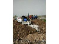 Reyhanlı'da 2 buçuk ton bozuk süt ve yoğurt imha edildi