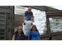 Burhaniye'de gübre satışları arttı