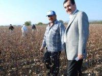 Milletvekili Erdem'den pamuk üreticisine 'şeffalık' müjdesi