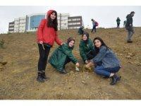 Düzce Üniversitesi öğrencilerinden anlamlı etkinlik