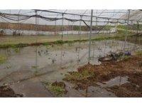 Söğüt'te seraları su bastı, çiftçiler büyük zarar gördü