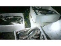 Mersin'de elektrikle balık avlayanlara suçüstü