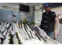 Tezgahları havuz balıkları süslüyor