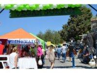 Türkiye tek vegan festivali Didim Vegfest başladı