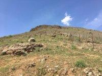 Solhan'daki kayalıklar için önlem alınacak