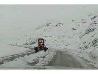 Van'da nisan karı etkili oluyor