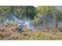 3 dönüm ormanlık alan kül oldu