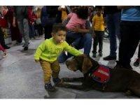 Jandarma köpeği Vaka, çocukların ilgi odağı oldu