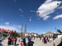 Uçurtmalar 23 Nisan'da Sarıkamış semalarını süsledi
