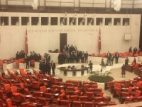 Milletvekilleri Genel Kurulu oturumu bittikten sonra fotoğraf çektirdiler
