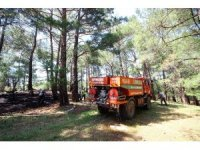 Kazdağlarında orman yangını söndürüldü