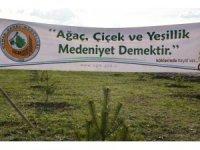Ağrı'da 24 bin ağaç dikimine başlandı