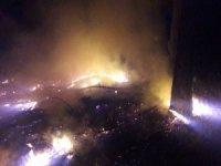 Bursa'da yıldırım düştü 2 dekar alan kül oldu